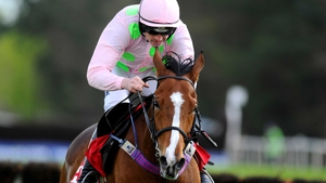 Faugheen is a top-price 5-4 for the Champion Hurdle