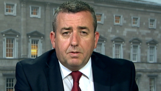 Ciarán Lynch said all of the independent experts are working on a pro-bono basis