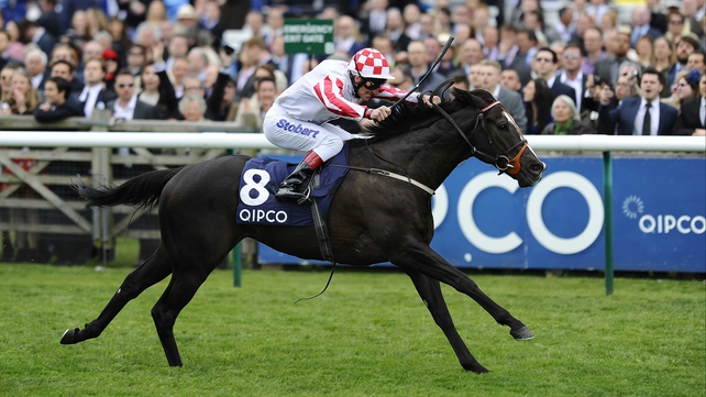 Speedball Sole Power has yet to win in seven attempts at six furlongs
