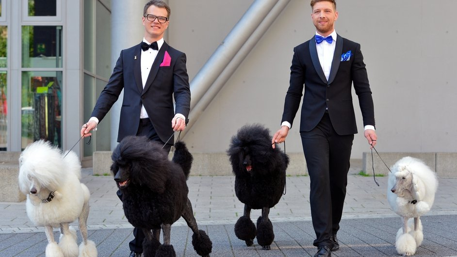 Two hair models pose with poodles at the Hair and Beauty 2014 fair in Germany