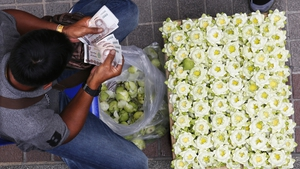 A flower seller counts money as he sells lotus flowers on a street in Bangkok, Thailand