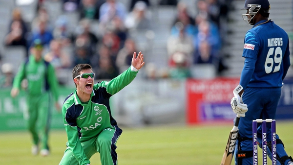 Ireland's George Dockrell makes an unsuccessful appeal