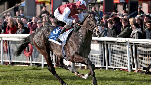 Jim Bolger's Answered (pictured) could take on Fascinating Rock at Leopardstown