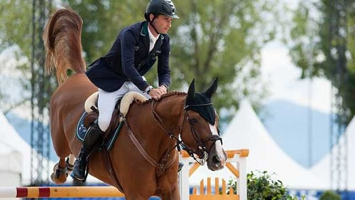 Denis Lynch and Coulisa have taken first place at Norten-Hardenberg