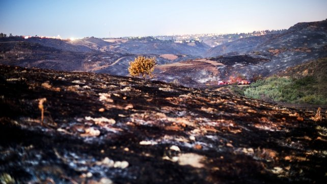 Scorched earth in North San Diego County