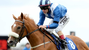 The mile-and-a-half trip of the Oaks should bring about significant improvement from Tarfasha, a half-sister to Saddler's Rock and Galileo Rock