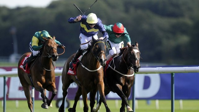 Thistle Bird will be partnered by Frankie Dettori for the first time in the Middleton Stakes