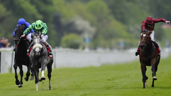 The Grey Gatsby would be stepping up to a mile and a half for the first time in the Grand Prix de Paris