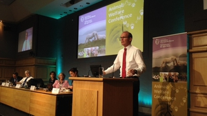 Simon Coveney has announced a review of the Control of Horses Act