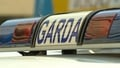 Two die in Co Laois crash