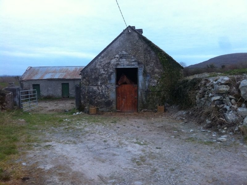 Rolo's stable in County Clare