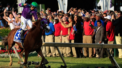 Victor Espinoza celebrates atop California Chrome No 3 after winning the 139th running of the Preakness Stakes at Pimlico race course