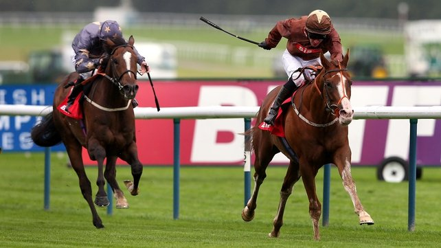 Top Notch Tonto may step up in distance following a disappointing showing at Newbury