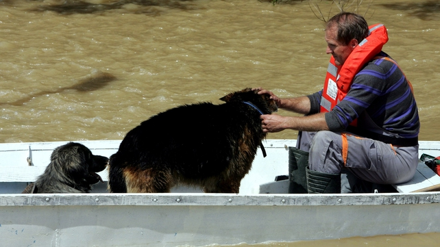 A rescuer with two dogs in a boat on a flooded street in the village of Gunja, in eastern Croatia