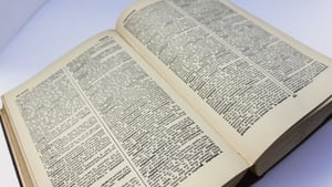 The publisher says new words are becoming mainstream more quickly than ever before
