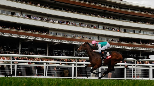 Kingman is a best-price 4-5 favourite for the Irish 2,000 Guineas