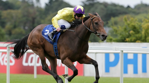 Trainer John Oxx has endured a luckless time with My Titania this season