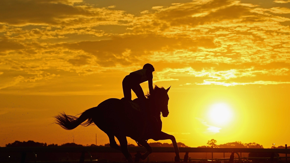 A horse and exercise rider train during sunrise at Belmont Park in Elmont, New York