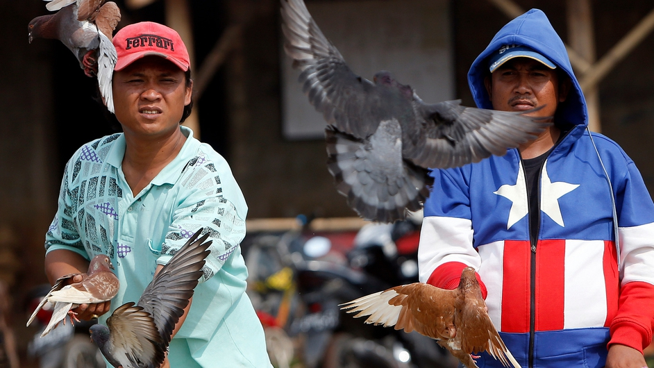 Pigeon owner set their pigeons free during a race amongst the birds in Bogor, Indonesia