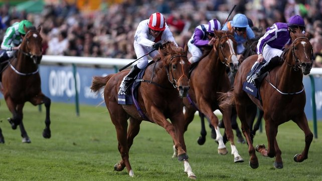 Night of Thunder trailed home eighth of nine runners in the Coral-Eclipse