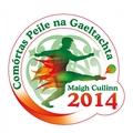 Bríd Uí Chonghaile, Cathaoirleach Chumann na mBan i Maigh Cuilinn.