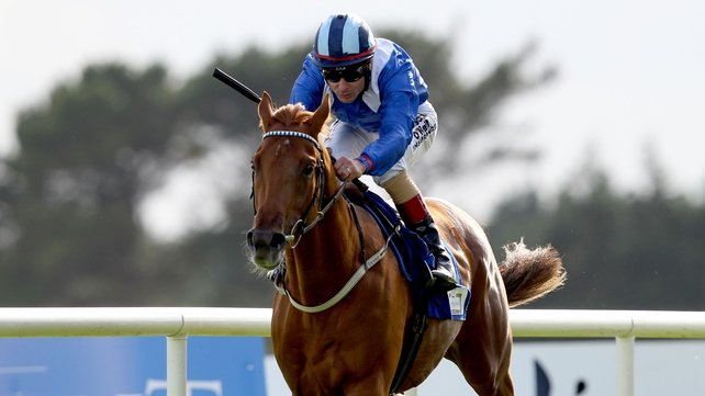 Mustajeeb in the St James's Palace Stakes at Ascot