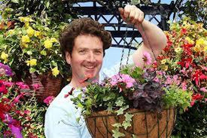 Gardener Diarmuid Gavin