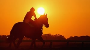 A horse and exercise rider train at sunrise on the main track in Belmont Park, New York