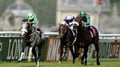 Grey Gatsby great at Chantilly