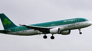 Aer Lingus said it was a matter for gardaí