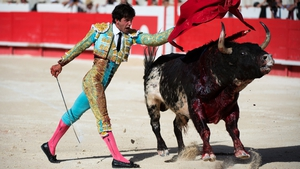 A Spanish matador performs a pass to a fighting bull during the Pentecost feria in Nimes, southern France