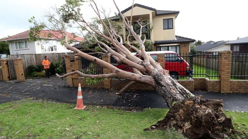 A house at Blockhouse Bay, Auckland, New Zealand is damaged by a falling tree as storms hit the area