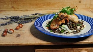Lavender roast chicken with braised lentils, hazelnuts and fennel
