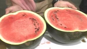 Watermelon Ginita: Rachel Allen