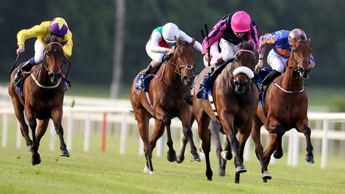 Majestic Queen romps home for victory