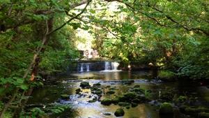 Fowley's Falls in Rossinver, Co Leitrim (Pic: Sandra Tucker)