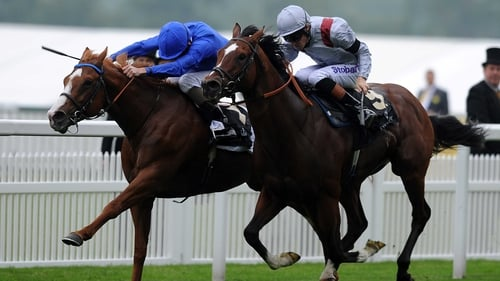 Toronado (near side) found only Dawn Approach too good at Royal Ascot 12 months ago