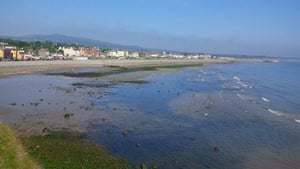 Bray beach basks in the June sunshine (Pic: @blueblood2013)