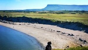 Enjoying Co Sligo's Rosses Point (pic: @WalkiesSligo)