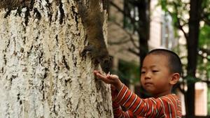A young boy feeds a squirrel at Yunnan University, China