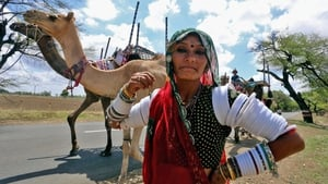 A nomadic tribal woman with her belongings and camels on the outskirts of Bhopal, India