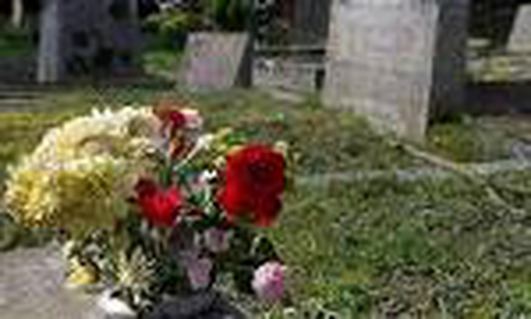 Plants stolen from grave