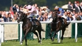 Fugue floors Treve in Prince of Wales's Stakes