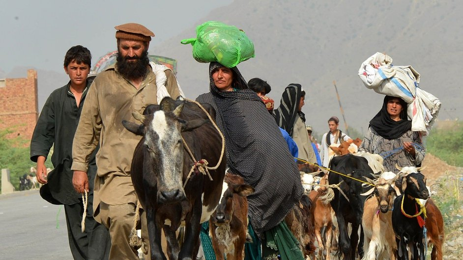 Pakistani civilians, fleeing from a military operation in North Waziristan, arrive with their livestock in Bannu district