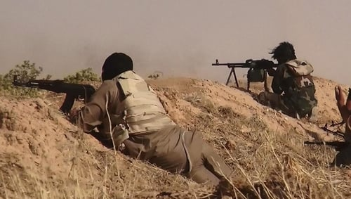 A number of Irish citizens are believed to have fought for ISIS (file image)
