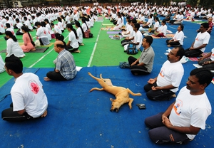 A downward facing dog rolls between participants at an event marking World yoga Day in Bangalore, India
