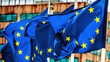 Leniency with EU budget rules
