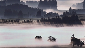 Morning fog glows above the Alpine foothills near Bernbeuren, Germany