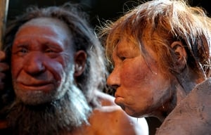 Evidence of cannibalism among Neanderthals found in Belgian cave