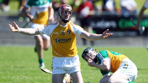 Meanwhile, Antrim's PJ O'Connell makes an earnest appeal during the hurling qualifier against Offaly